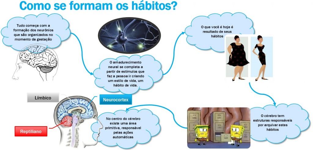 Como se Formam os Hábitos