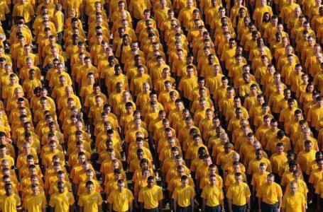 Cultura Organizacional –  Imagem: Pexels